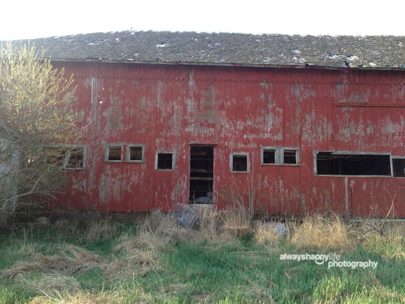 Old Barn Repurposed for Studio Walls