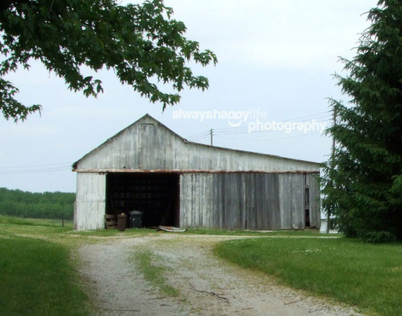 Old White Barn in Green Fields in Indiana